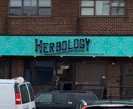HERBOLOGY unlit